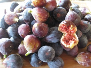 Getting ready to make fig jam
