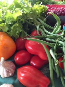 Locally grown San Marzano tomatoes, green beans, garlic and more